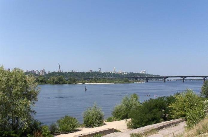 Виноградарь_Киев.jpg